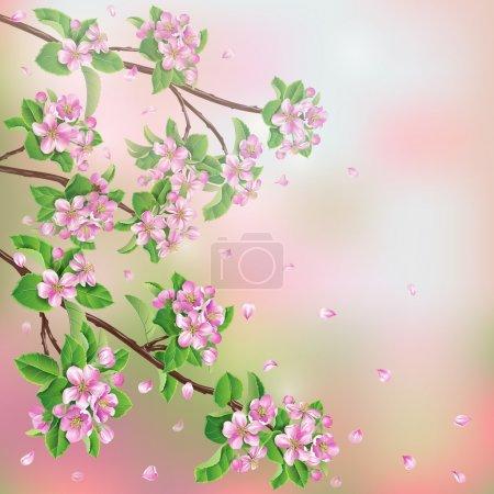 Illustration pour Fond printanier avec des branches de pommier en fleurs et des pétales volants . - image libre de droit