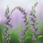 Summer lilac  background with bluebells