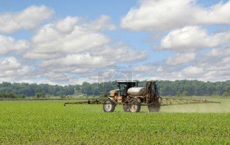 Spraying Corn Crop