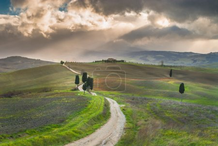 Photo for Spring on the road with the beautiful Tuscan cypress. - Royalty Free Image
