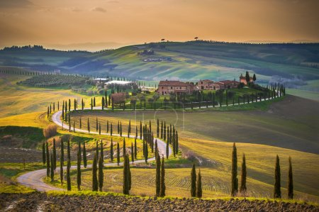 Tuscany serpentine road between sunny field.