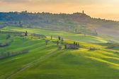 Toskánské zelené ráno a svítání, Itálie