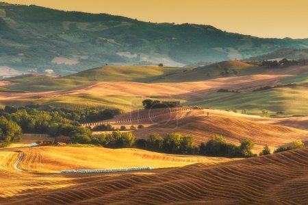 la lumière chaude peinture val d'Orcia en Toscane