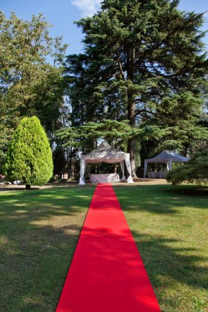 Red carpet before a wedding