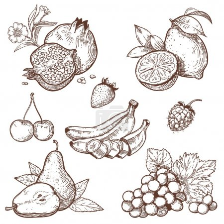 Illustration for Icons of sweet fruits and berries on a white backgroun - Royalty Free Image