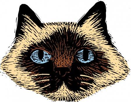 Woodcut Illustration of Cat Face
