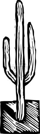 Holzschnitt-Illustration des Saguaro-Kaktus