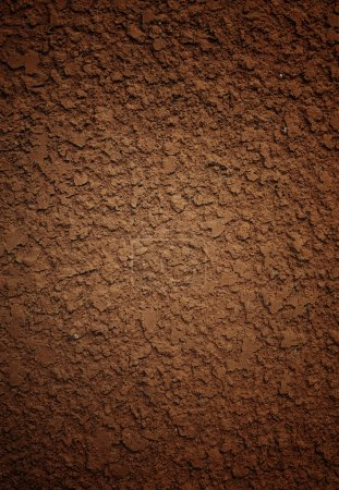 Photo for Ground texture - Royalty Free Image