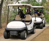 Golfový vozík nebo klubu auto na golfovém hřišti