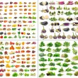 Fruit and Vegetables collection isolated on white ...