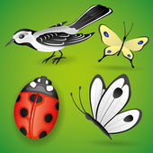 Vector set Bird and insects