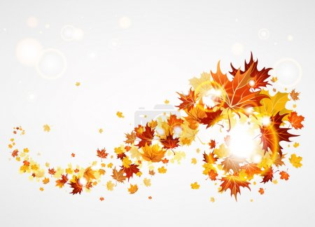 Beautiful swirl of maple leave