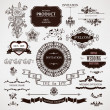 Vector wedding design elements and calligraphic pa...