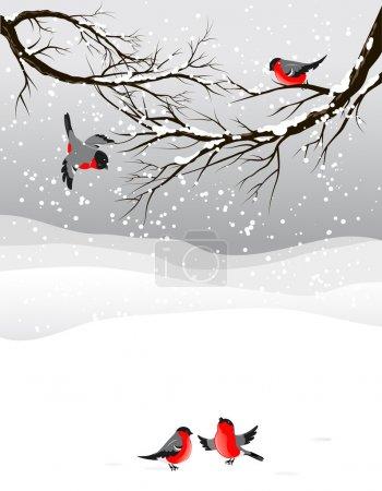 Illustration pour Fond d'hiver avec des oiseaux bullfinch avec espace pour le texte - image libre de droit