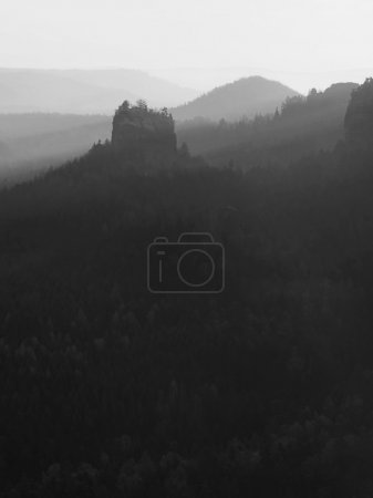 Sunrise in a beautiful mountain of Czech-Saxony Switzerland. Sandstone peaks increased from foggy background. Black and white photo.