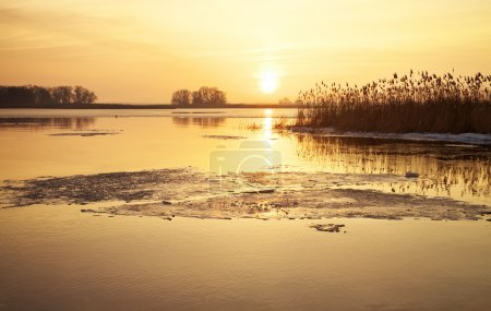 Winter landscape with river, reeds and sunset sky.