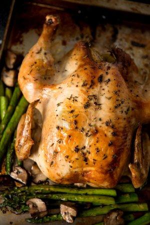 Whole Roasted Free Range Chicken