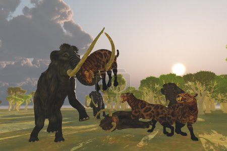 Mammoth and Saber-Toothed Cat