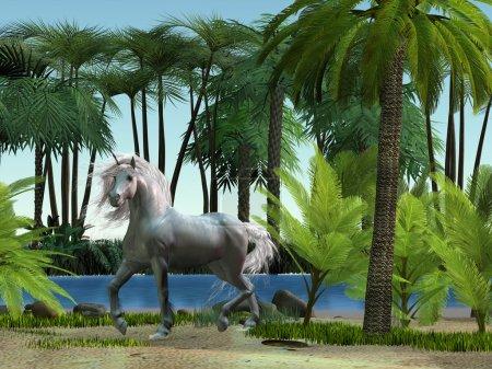 Unicorn in Tropics