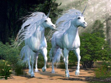 Photo pour Licornes buck deux courent ensemble à travers une belle forêt magique. - image libre de droit