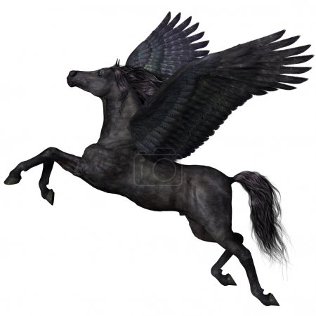 Photo for A magical black Pegasus spreads its wings and flies up into the sky. - Royalty Free Image