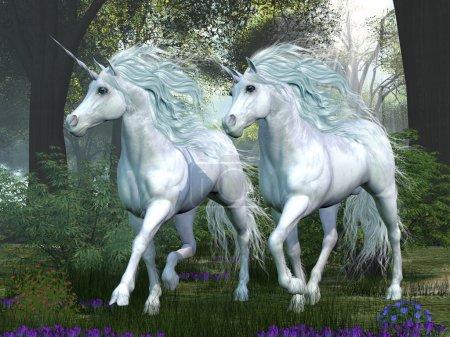 Unicorn Elm Forest