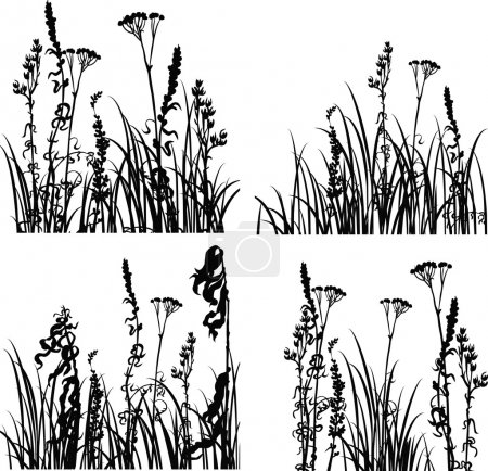 Illustration for Four silhouettes  of flowers and grass, vector illustration - Royalty Free Image