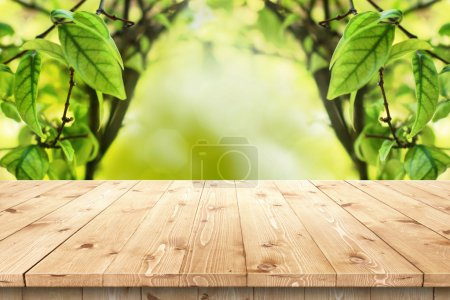 Photo for Empty wooden table in a sun drenched summer garden for product placement or montage with focus to the table top in the foreground, with summer bokeh background. - Royalty Free Image