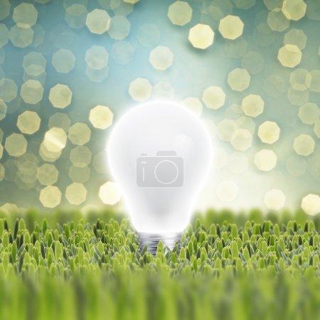 Photo pour Ampoule sur herbe verte sur fond bokeh clair - image libre de droit