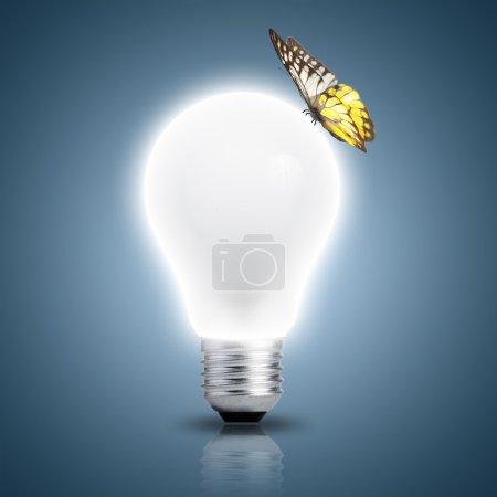 Photo pour Papillon allumé ampoule qui s'allume - image libre de droit