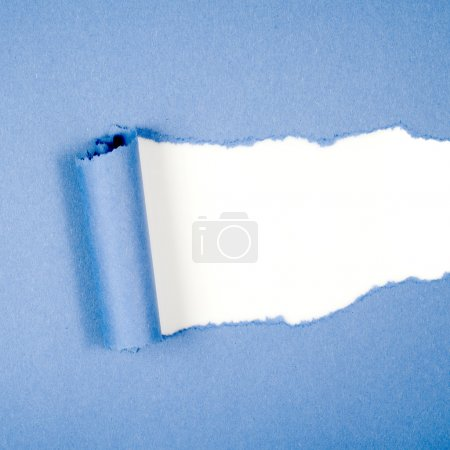 Ripped in blue paper on white
