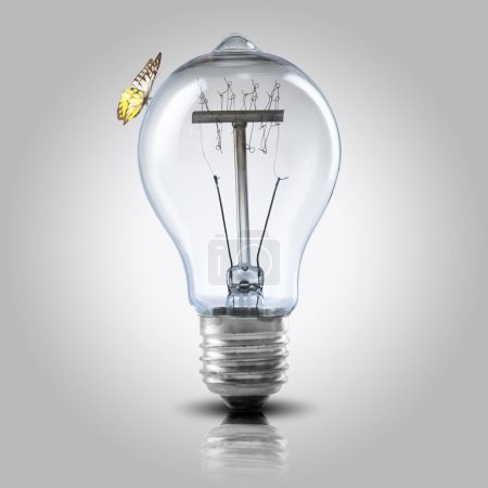 Light bulb with butterfly
