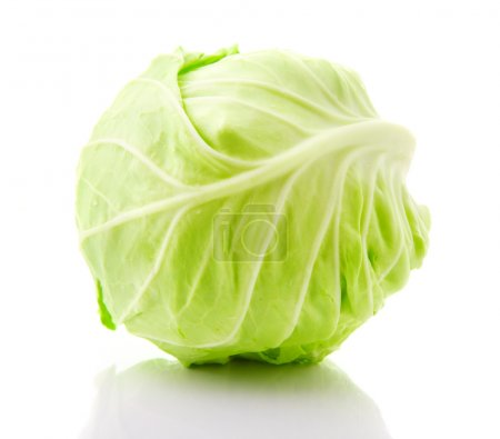 Image of white cabbage head