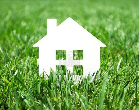 Photo pour Icône maison en papier dans une herbe verte fraîche - image libre de droit