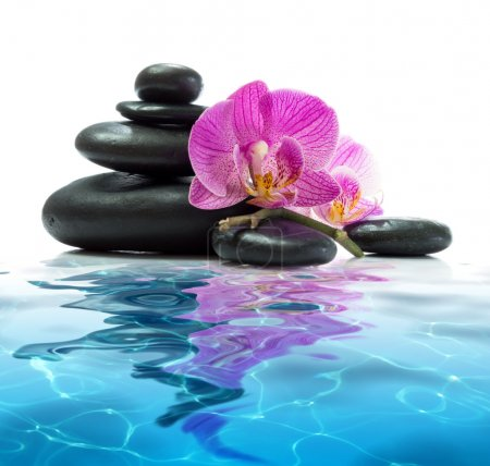 Purple orchids with tower black stones on blue water