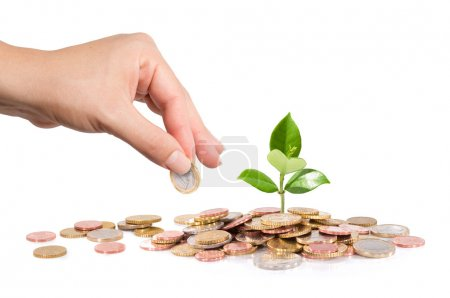 Money and plant with hand finance new business - start-up