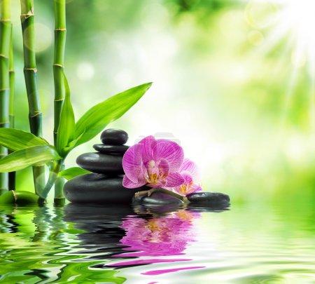Photo pour Spa de fond - orchidées pourpres noir pierres et bambou sur l'eau - image libre de droit