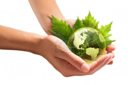 Environmental concept with glass globe and leaves on white background - America