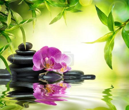 Alternative massage in bamboo garden on water