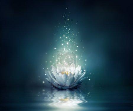 Photo pour Nénuphar sur l'eau - fond de conte de fées - image libre de droit
