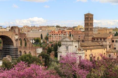 Roman Cityview