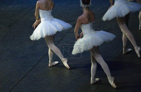 Ballet dancers performing Swan Lake of Pyotr Tchai...