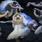 Odette resurrection in the performance of Swan Lak...