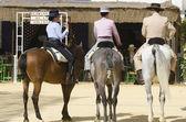 Horse Fair, Jerez de la frontera