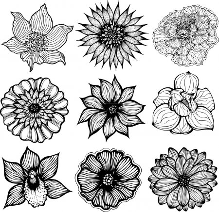 Illustration for Set of 9 different hand drawn flowers, black and white isolated vector illustration - Royalty Free Image