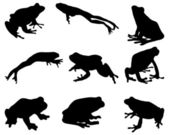 Black silhouettes of frog vector