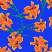 Oranžové lilie na modrém pozadí