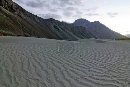 Sand dunes in Nubra Valley, india
