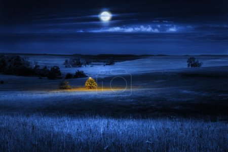Photo for A brightly lit Christmas Tree glows warmly with the Christmas Spirit on a cold winter's night, under a full moon, in the open tall grass prairie. - Royalty Free Image