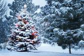 Jasně osvětlená sněhem pokryté vánoční strom v sněhové bouři